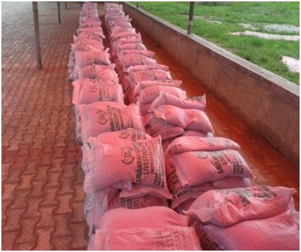 SWFSREP Seed Distribution at Apete Onidoko Village