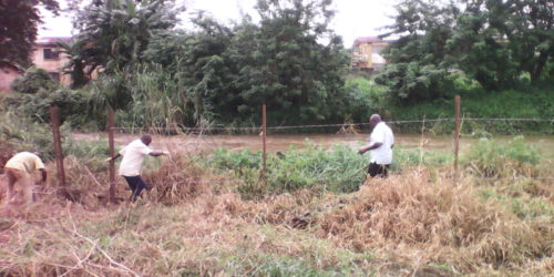 land reclamation for irrigation 2